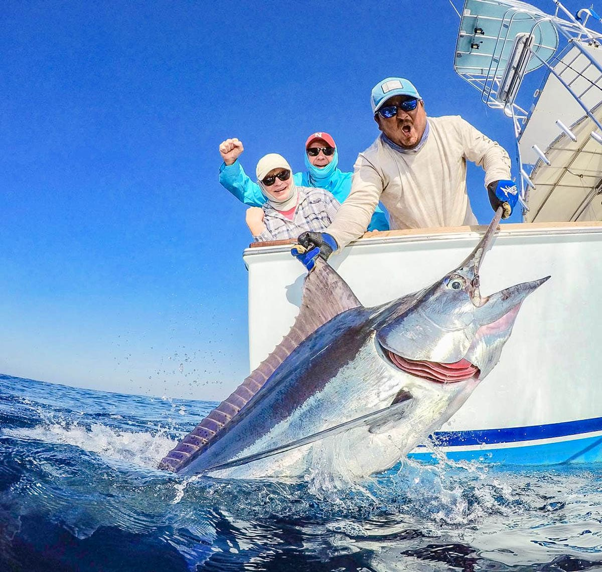 Costa Rica blue marlin
