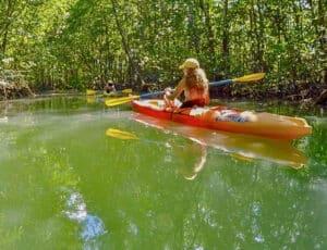 croc-kayak-300x230.jpg