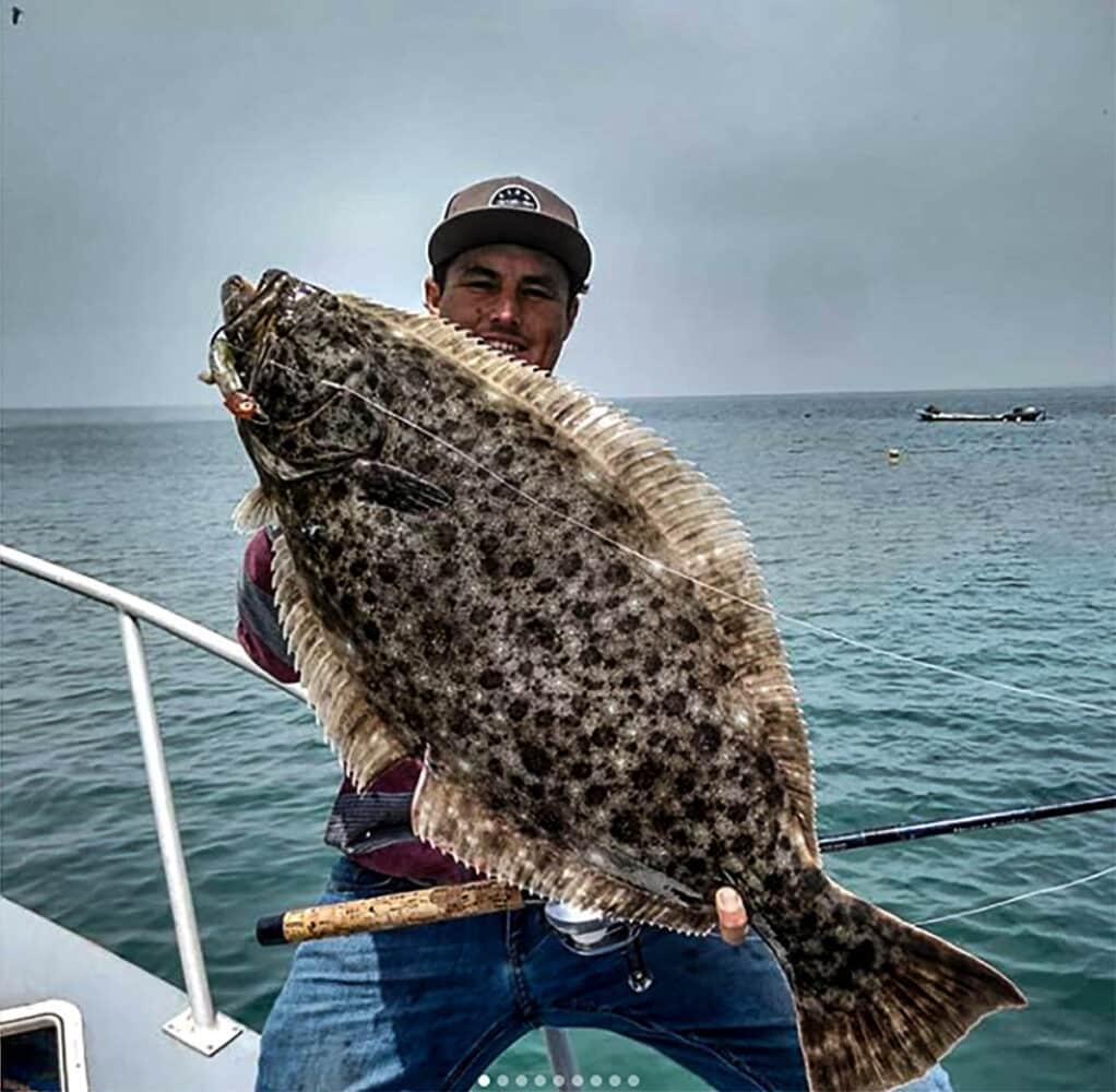 Baja halibut