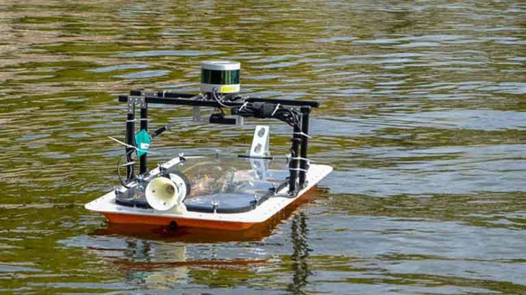 boat future