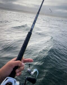 sportboat fishing reports