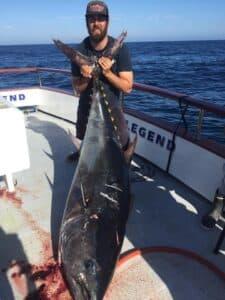 bluefin fishing