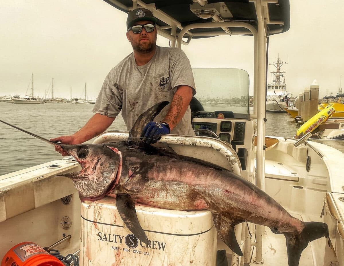 SoCal swordfish