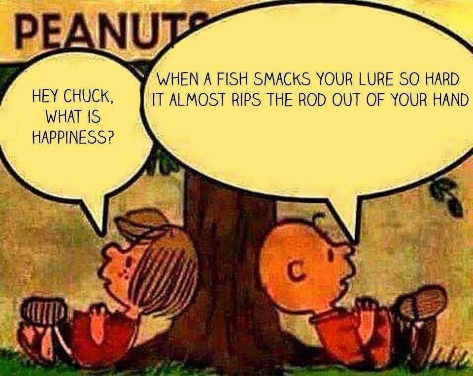 Fishing memes