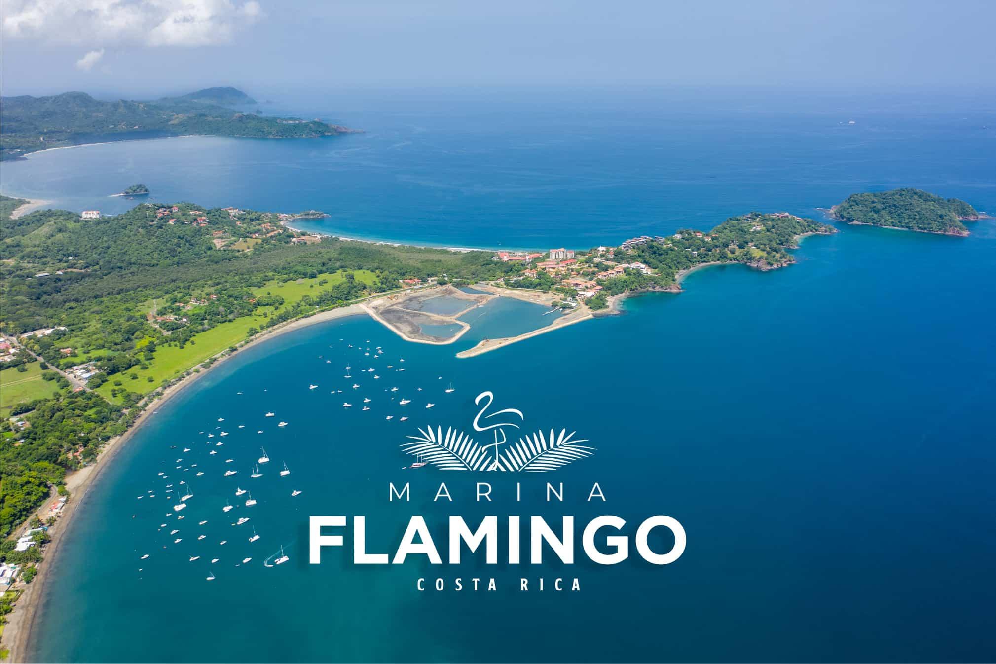 Marina Flamingo