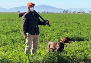 pheasant hunting mexico