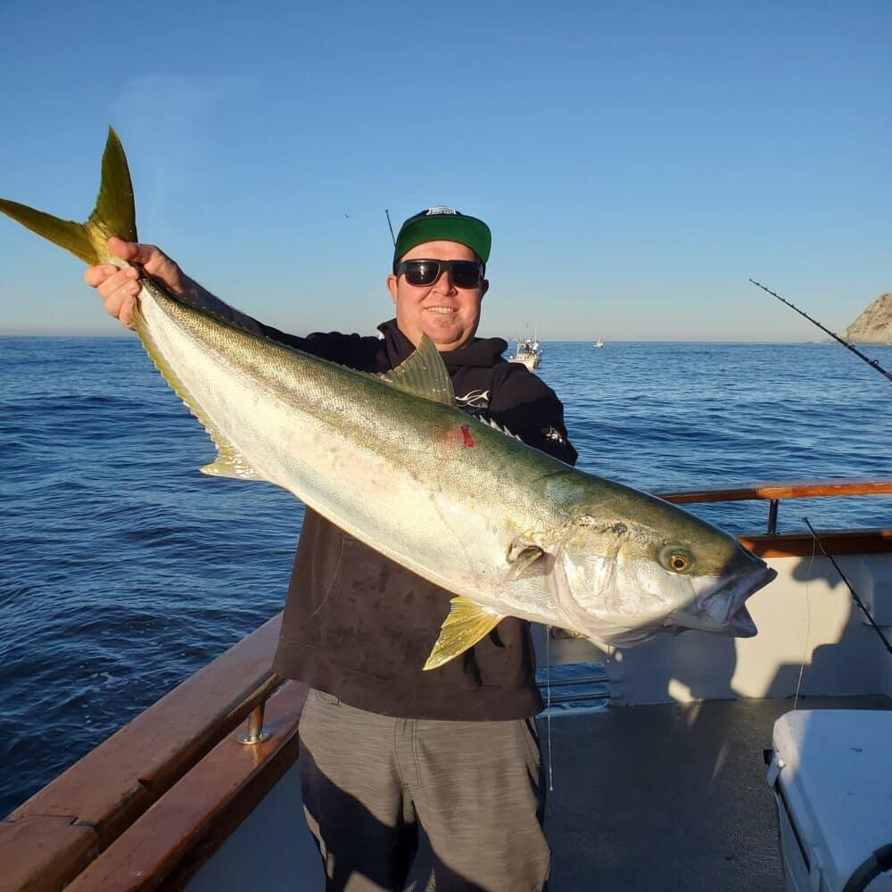 SoCal yellowtail fishing