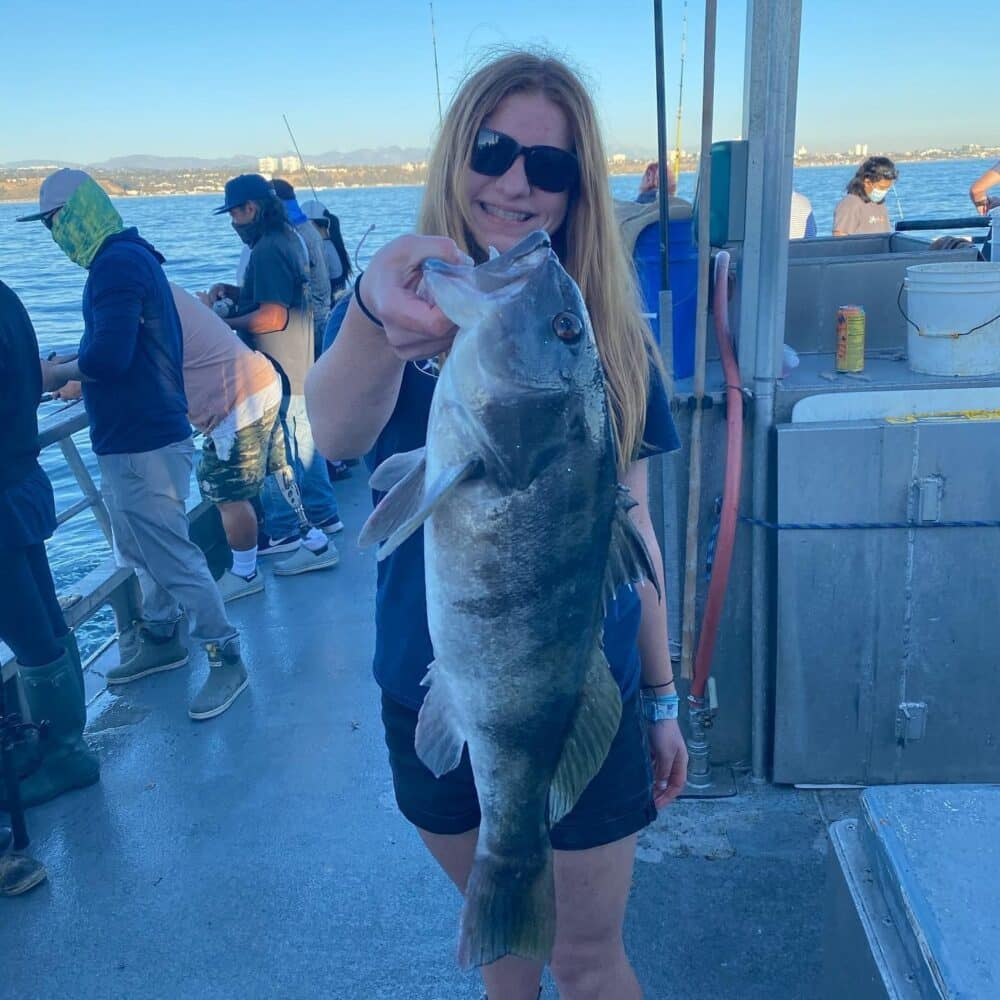 SoCal sand bass reports