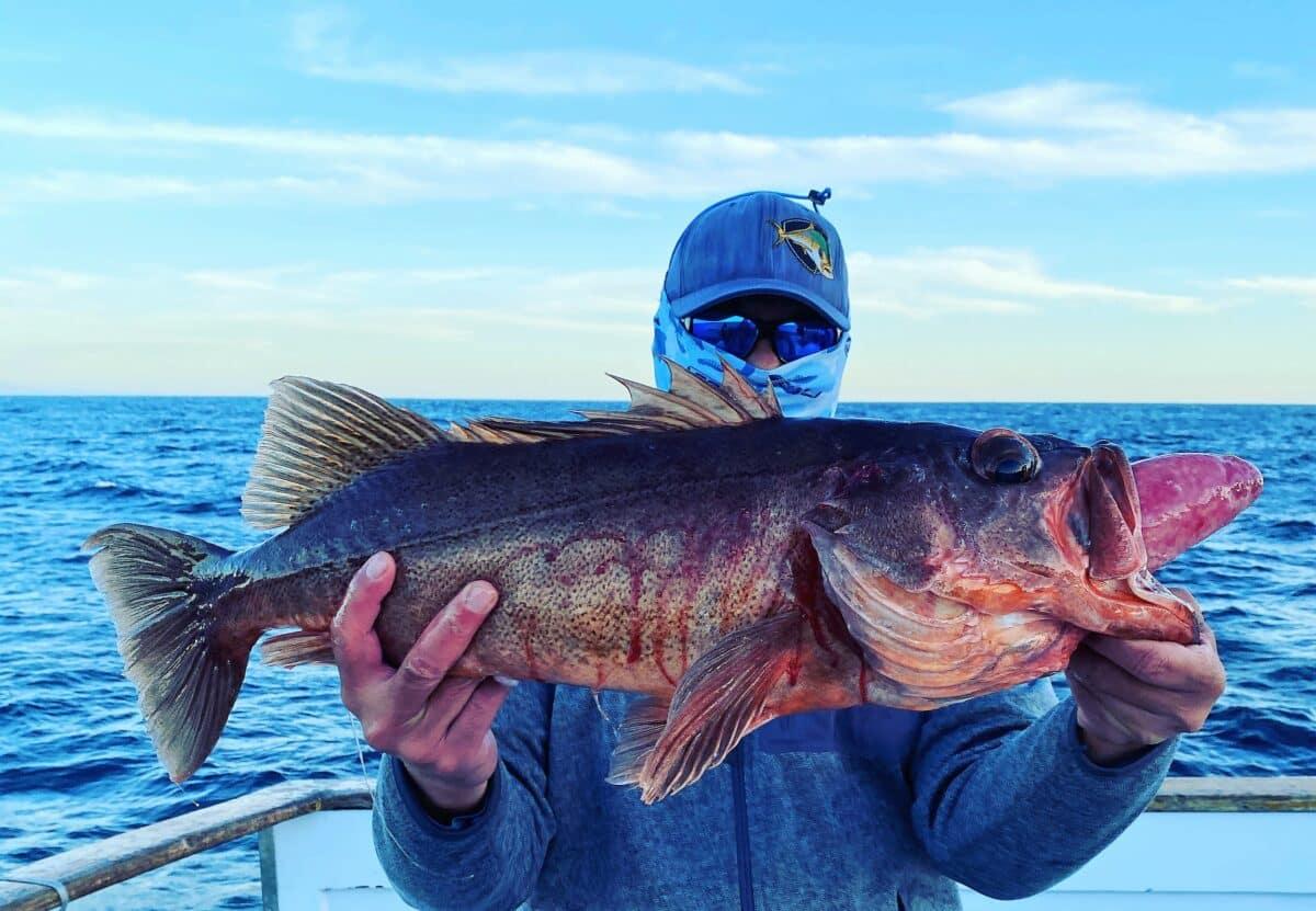 SoCal sportboat fishing reports