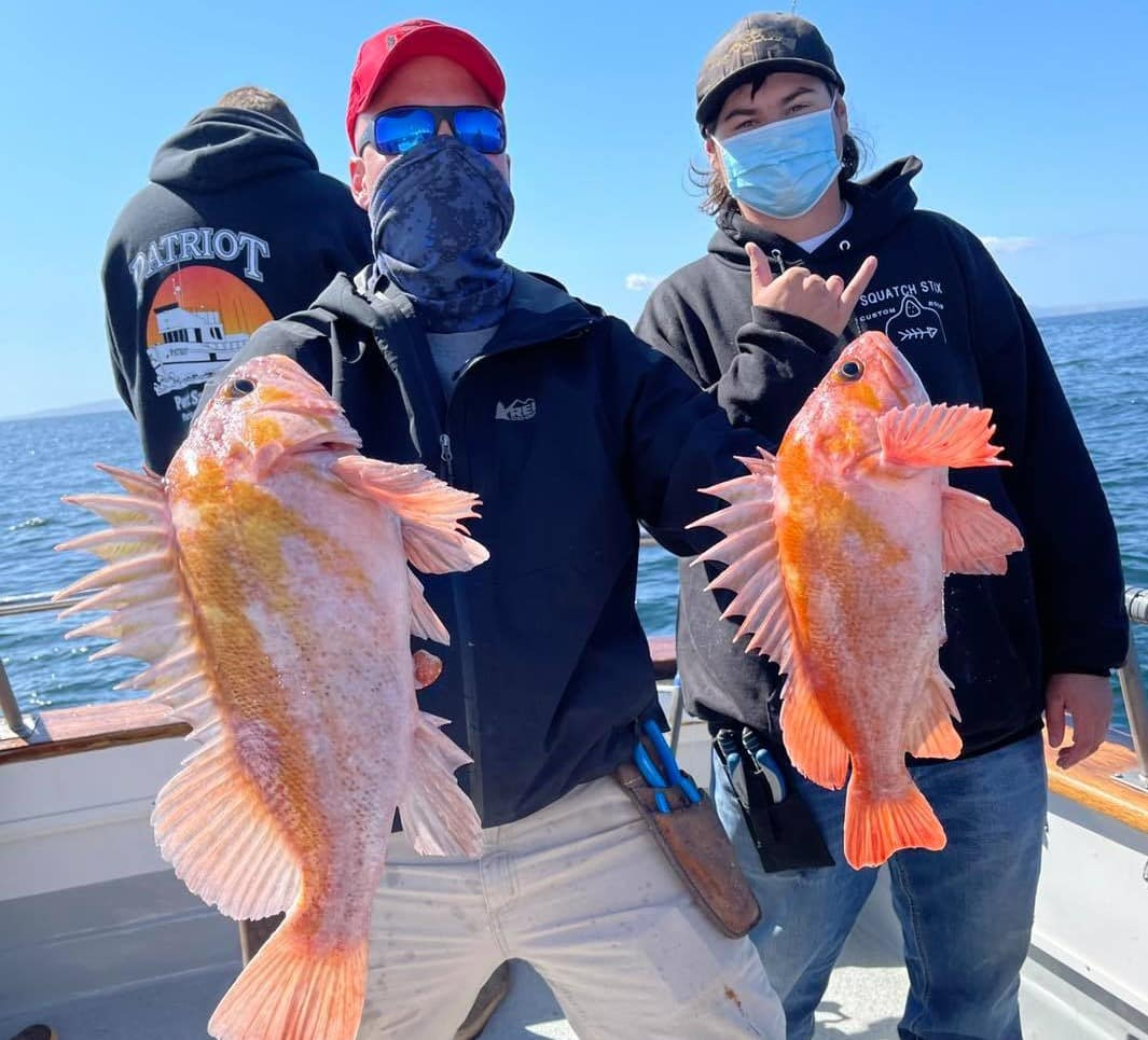 SoCal rockfish reports