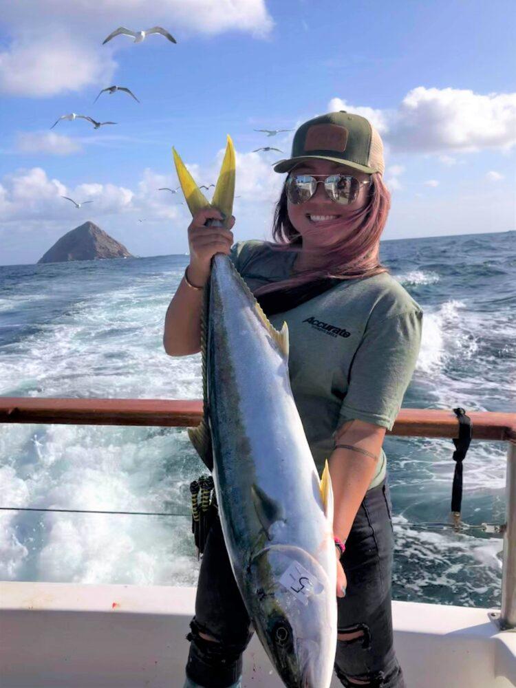 yellowtail fishing reports