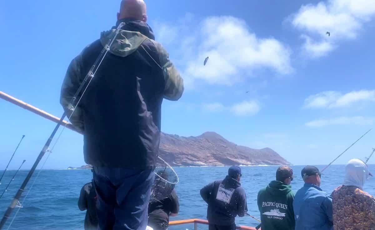Fishing San Diego sportfishing
