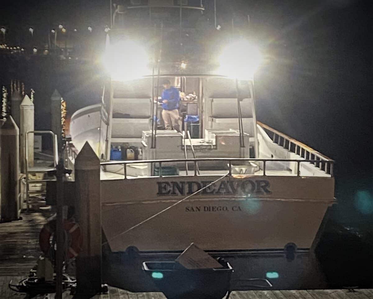 endeavor sportfishing