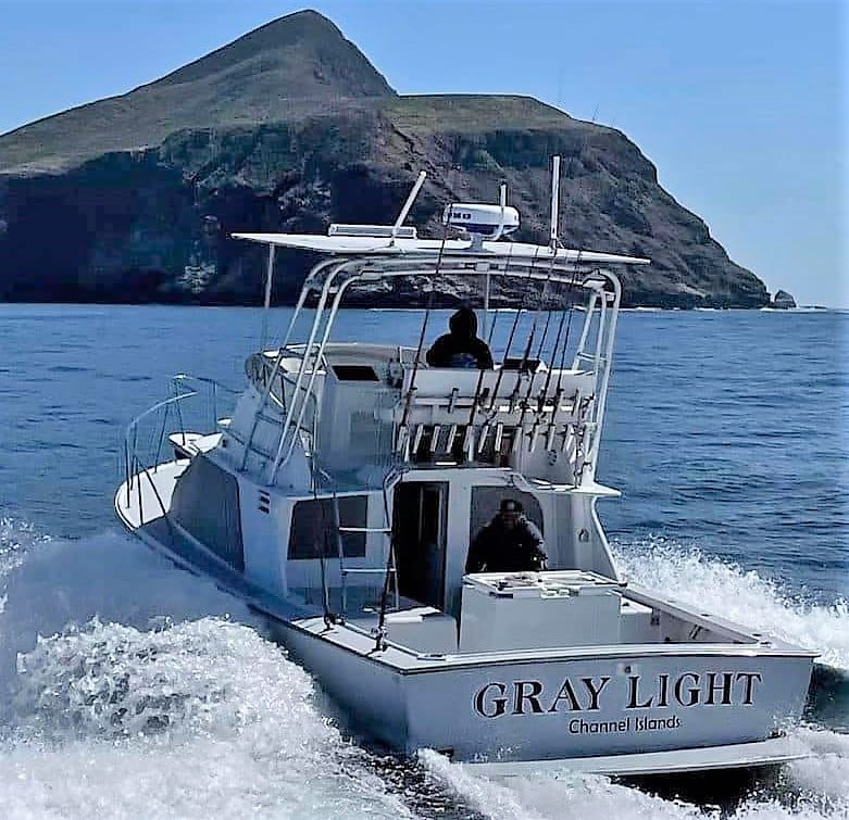 gray light sportfishing
