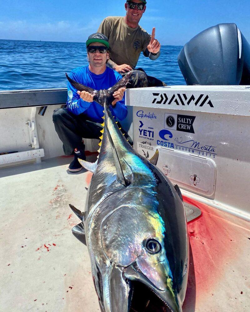 California Bluefin Tuna