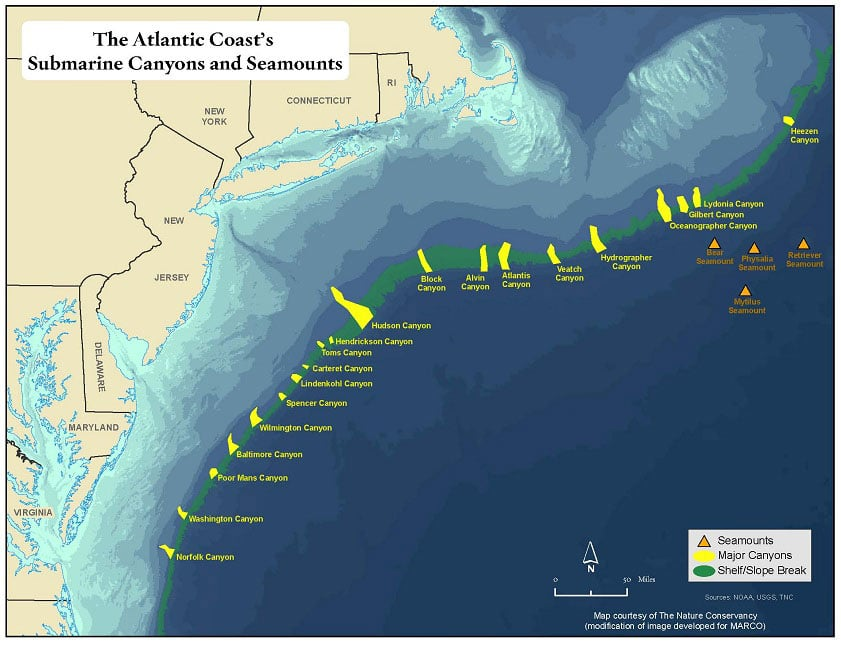 offshore fishing northeast canyons