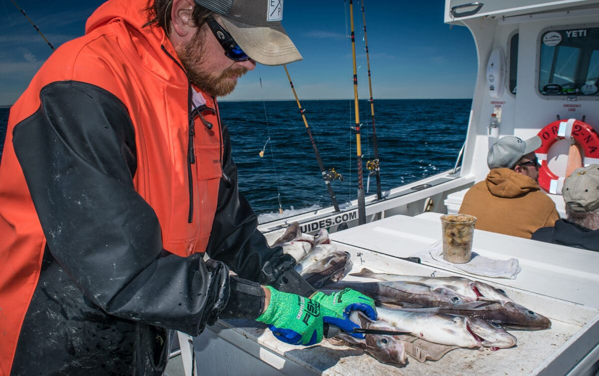 offshore fishing northeast