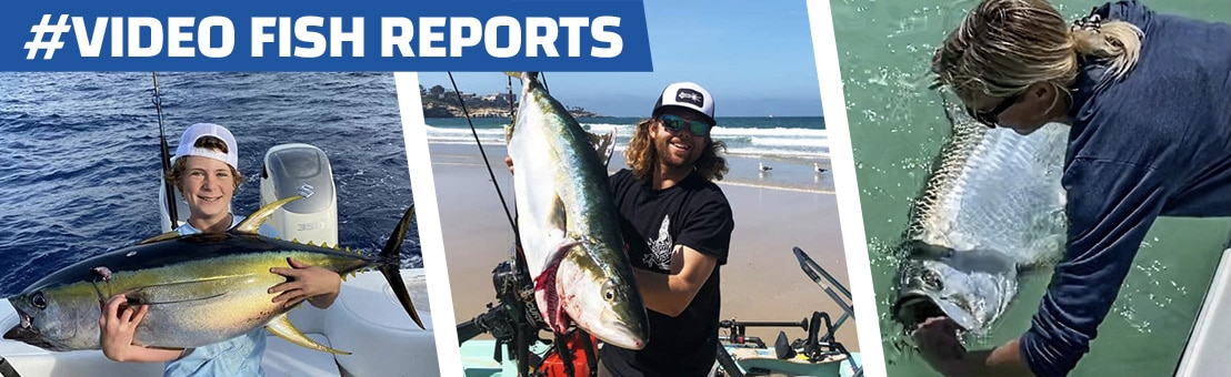 Video Fishing Reports