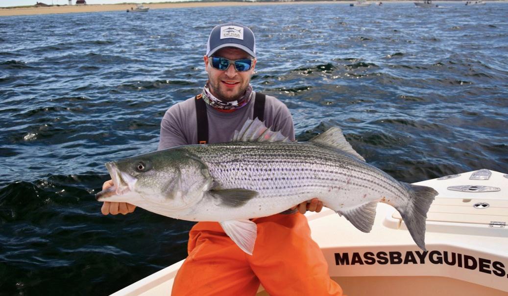 striped bass fishing northeast