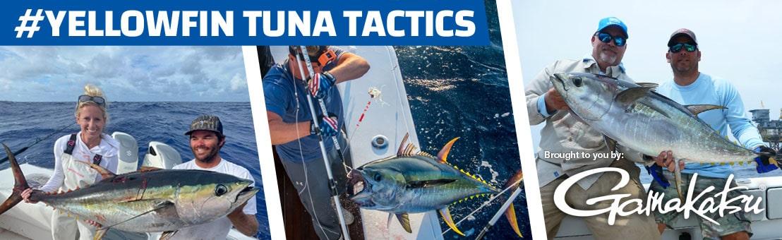 Yellowfin Tuna Tactics
