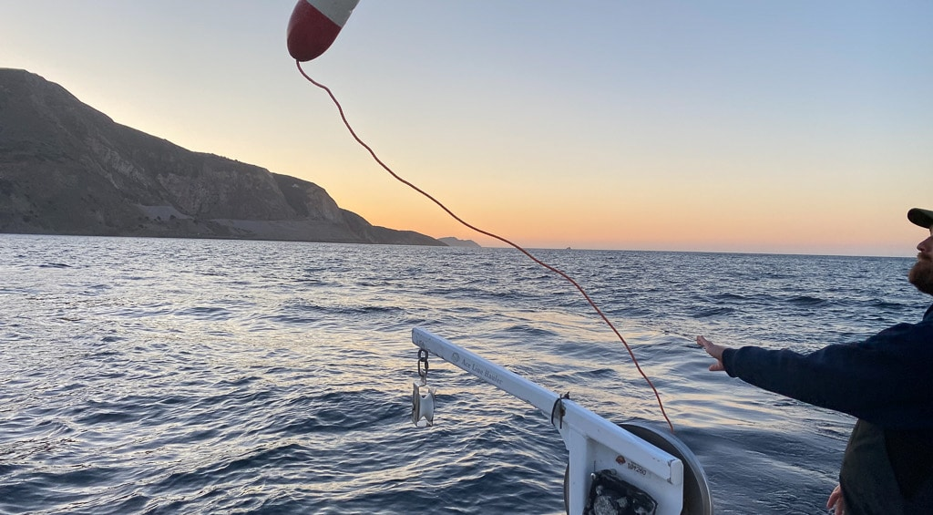Lobster Hoop netting Catalina