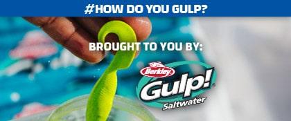 How Do You Gulp!?